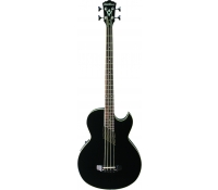 Washburn AB10 Acoustic Bass Guitar