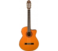Washburn C5CE Classical Guitar