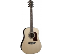 Washburn HD20S Acoustic Guitar