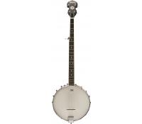 Washburn B7 Banjo