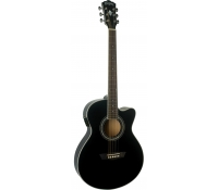 Washburn EAT12 Acoustic Guitar